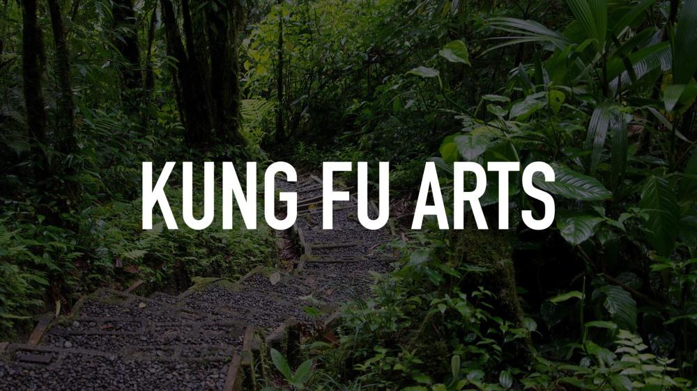 kung_fu_arts_6812390